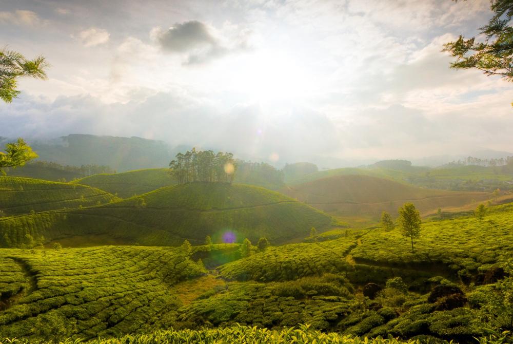 Kelionė į Indiją (egzotinės kelionės) 10