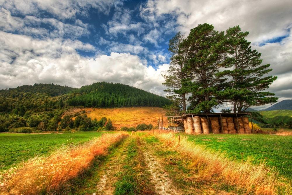 Kelionė į Naująją Zelandiją (egzotinės kelionės) 16
