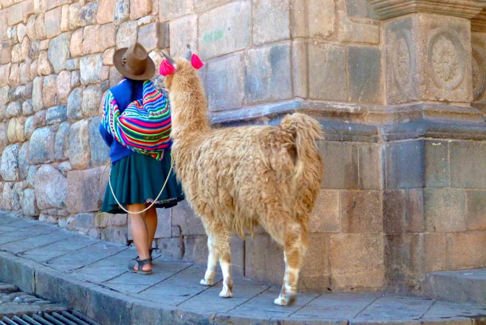 Kelionė į Boliviją (egzotinės kelionės) 17