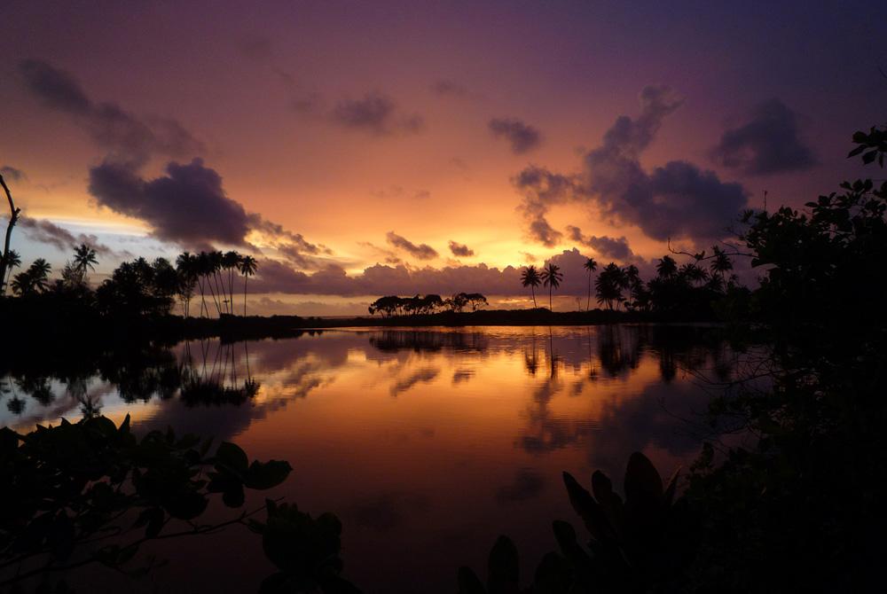 Kelionė į Šri Lanką (egzotinės kelionės) 18