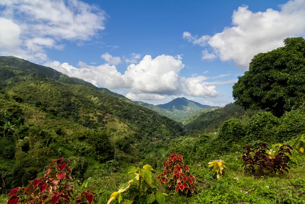 Kelionė į Jamaiką (egzotinės kelionės) 18