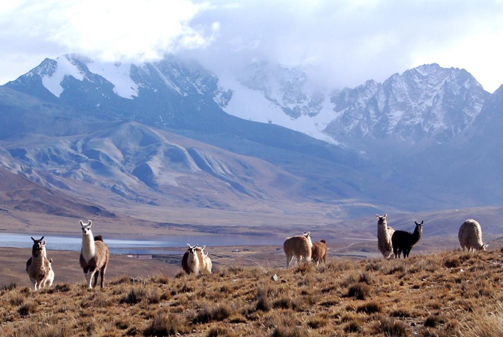 Kelionė į Boliviją (egzotinės kelionės) 2
