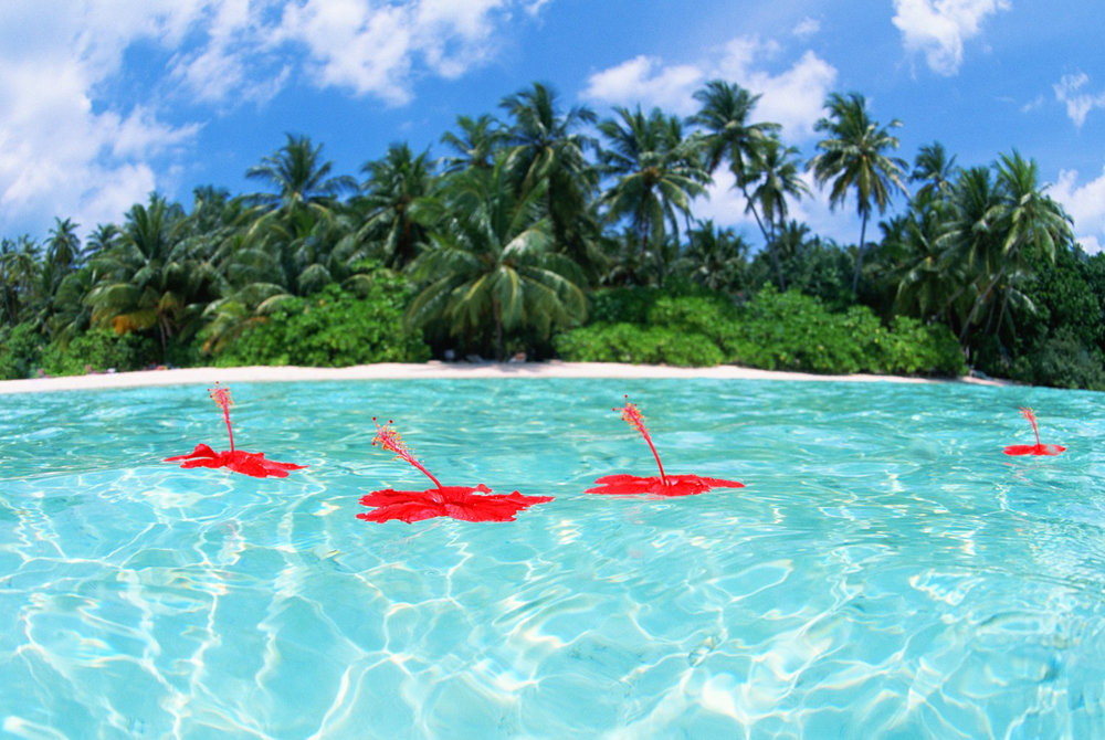 Kelionė į Maldyvus (egzotinės kelionės) 22