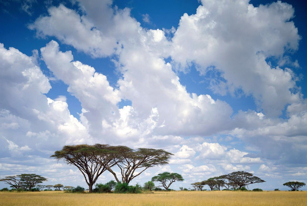 Kelionė į Keniją (egzotinės kelionės) 42_2