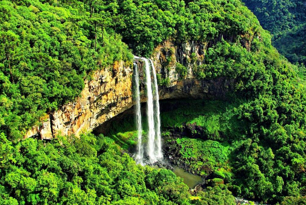Kelionė į Braziliją (egzotinės kelionės) 47