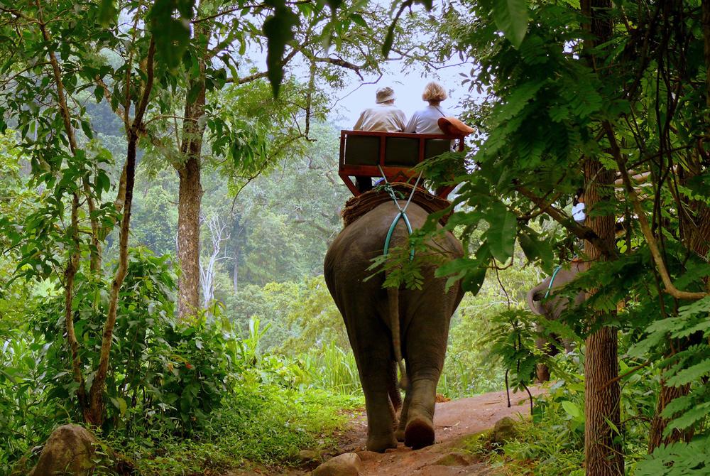 Kelionė į Braziliją (egzotinės kelionės) 48
