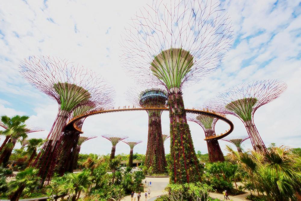 Kelionė į Singapūrą (egzotinės kelionės) 9