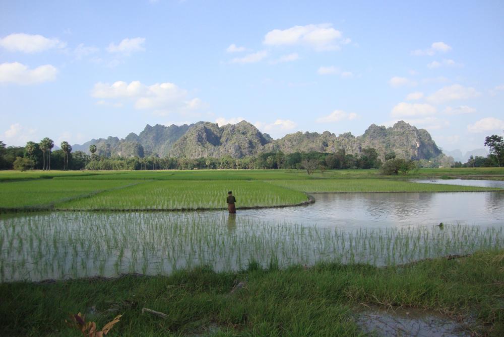 Kelionė į Birmą (egzotinės kelionės) 9