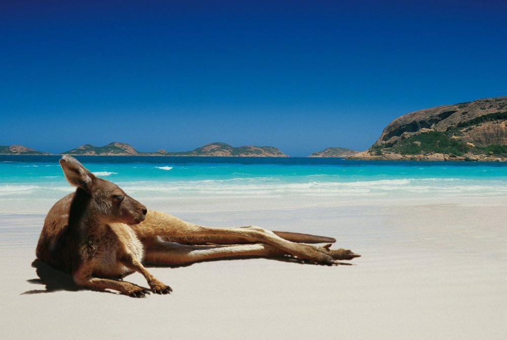 Kelionė į Australiją (egzotinės kelionės) 14