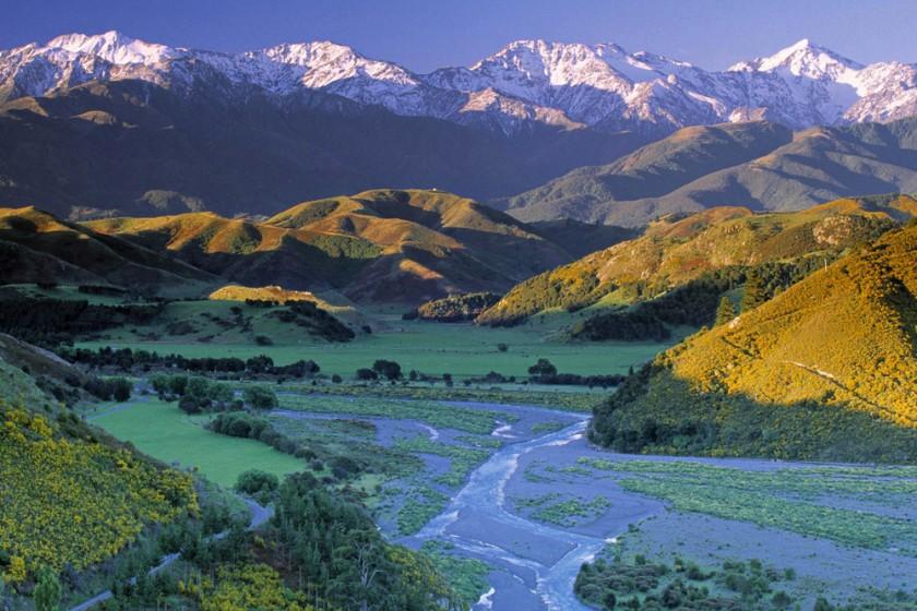 JAI-NZ02235