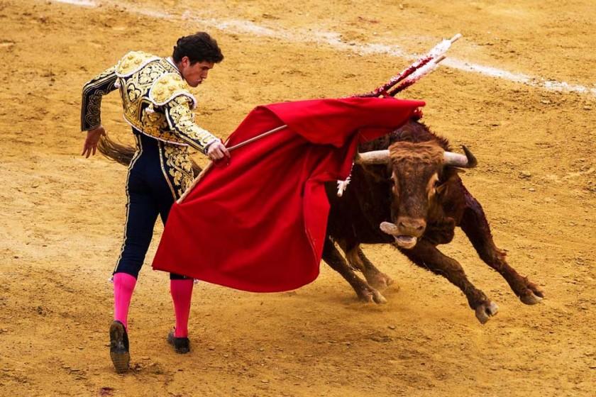 BESTPIX  Las Fallas Festival In Valencia